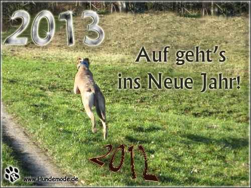 neujahr2013