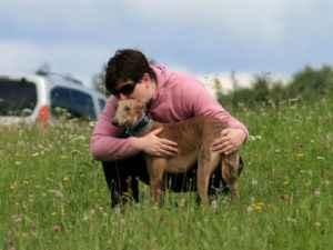 Hund? Erklärt die Autorin mit einem ihrer Windhunde